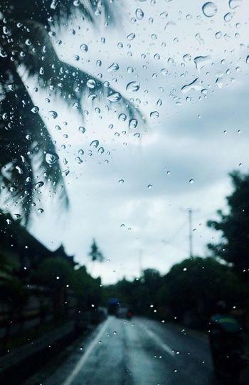 Rain Nice Day