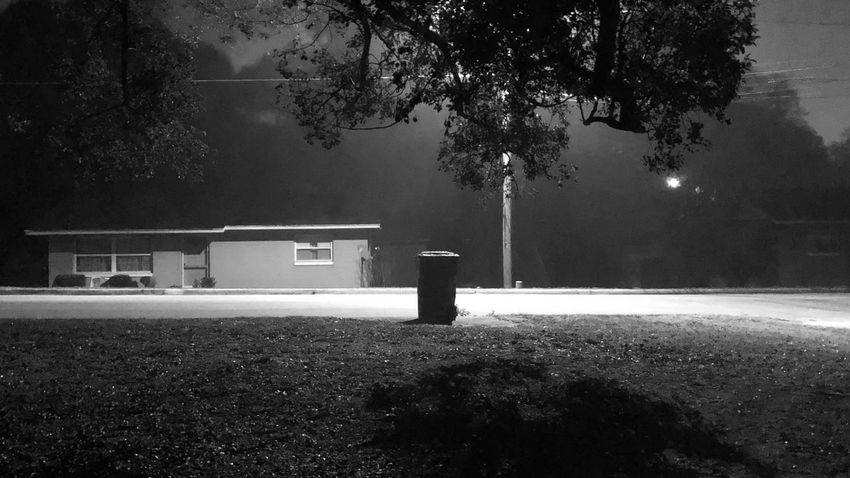 An Eerie Morning Foggy Morning B & W  Tree No People Outdoors Illuminated Architecture Built Structure Night