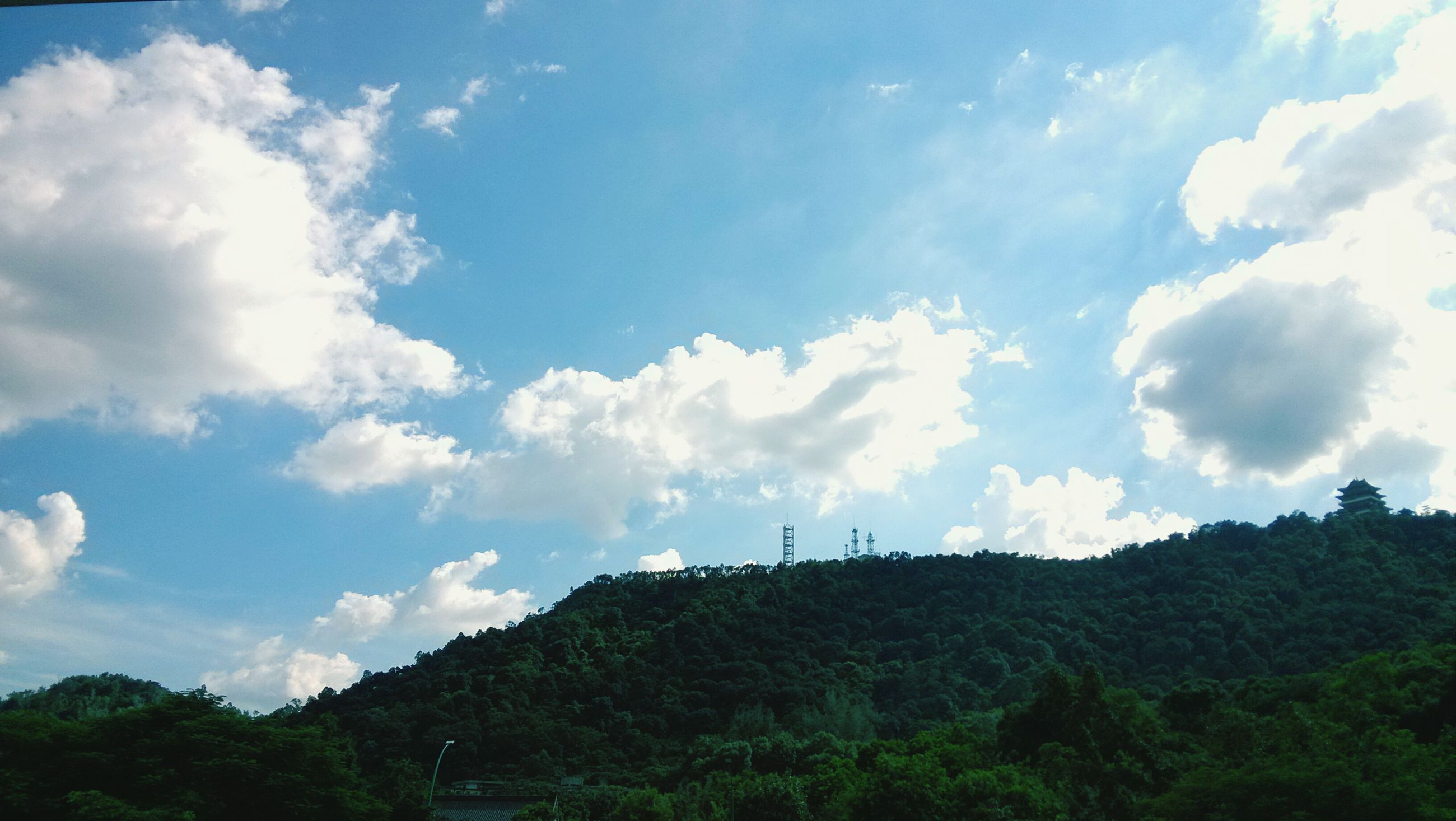 sky, tree, cloud - sky, mountain, tranquil scene, tranquility, scenics, landscape, beauty in nature, nature, cloud, low angle view, hill, blue, cloudy, non-urban scene, day, growth, idyllic, outdoors