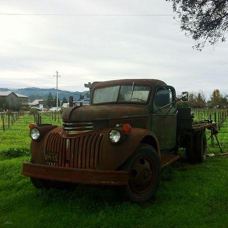 Jalopy Ñapa Napa Valley Winecountry Vsattui Jalopy