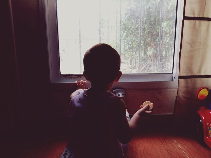 Rear view of boy looking through window while sitting at home