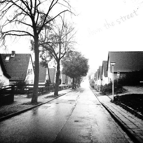 Black & White Street B&w Autumn