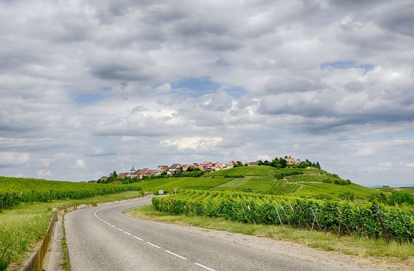 Agriculture Field Rural Scene Cloud - Sky Crop  Dramatic Sky Farm Landscape Hill Growth Nature Social Issues Scenics Beauty In Nature Tree Outdoors No People Day Sky Freshness Alsace France Alsace Travel Photography Route Des Vins Your Ticket To Europe