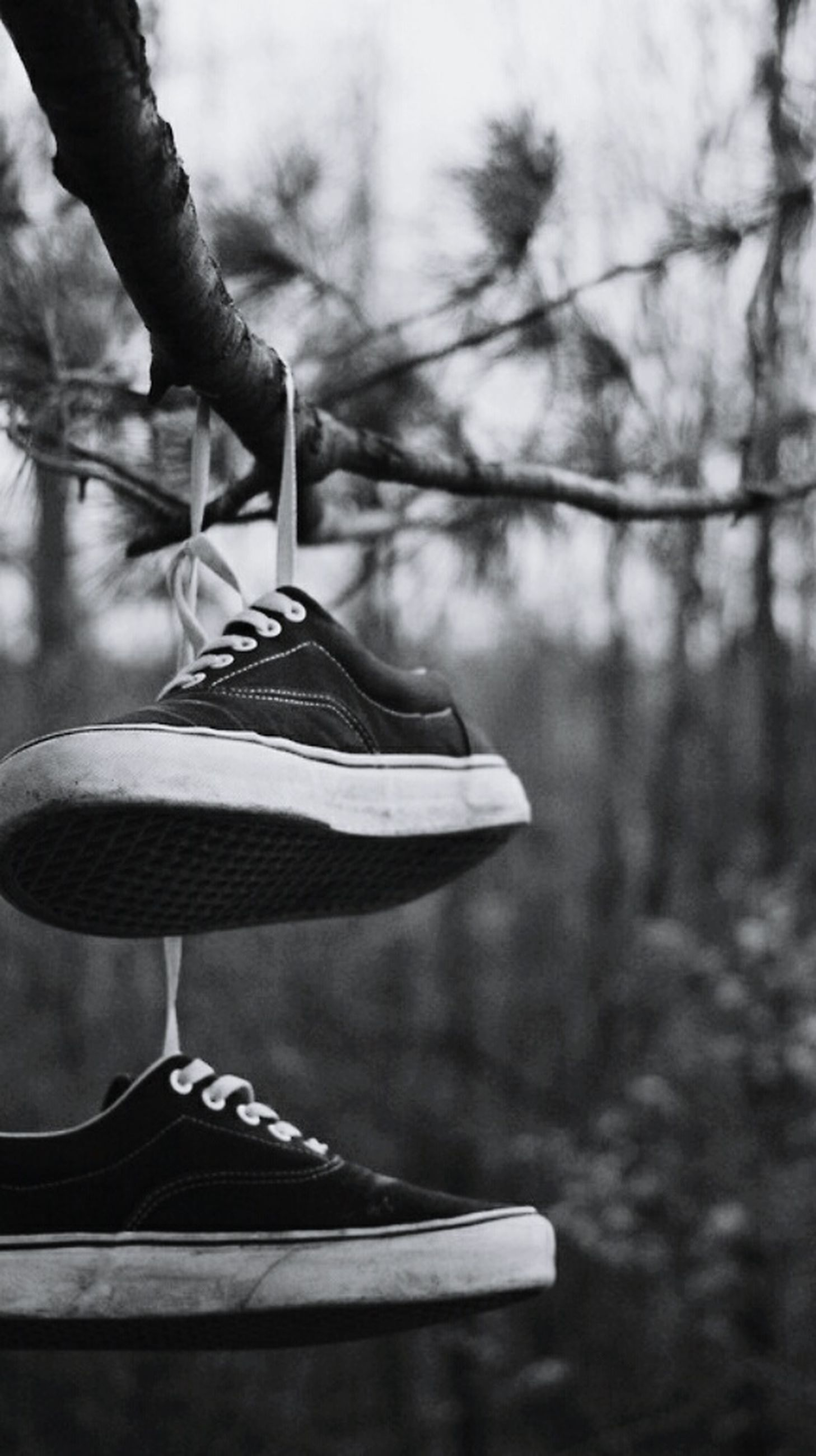 shoe, hanging, focus on foreground, pair, day, outdoors, no people, close-up, fashion, sport, tree