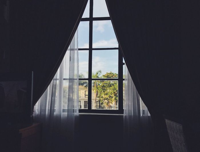 Window Indoors  Transparent Day No People Sky Tree Home Interior Architecture Drapes  Close-up