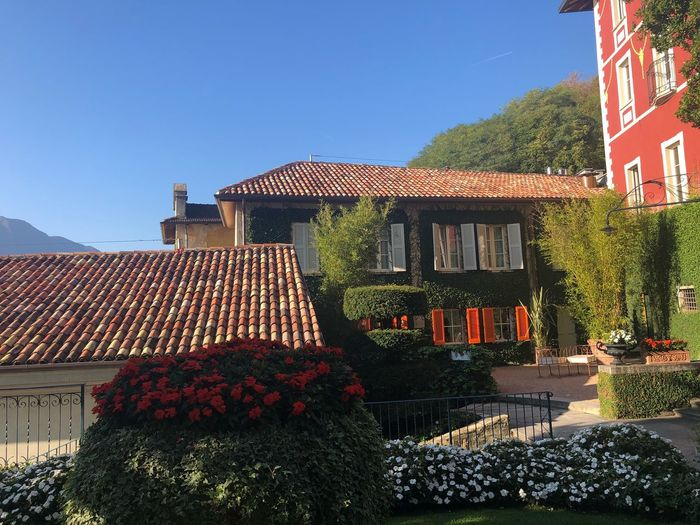 Como in October Colours Flowers Como Lake,Italy Architecture Building Exterior Built Structure Sky Clear Sky Building Nature Sunlight Day Outdoors House