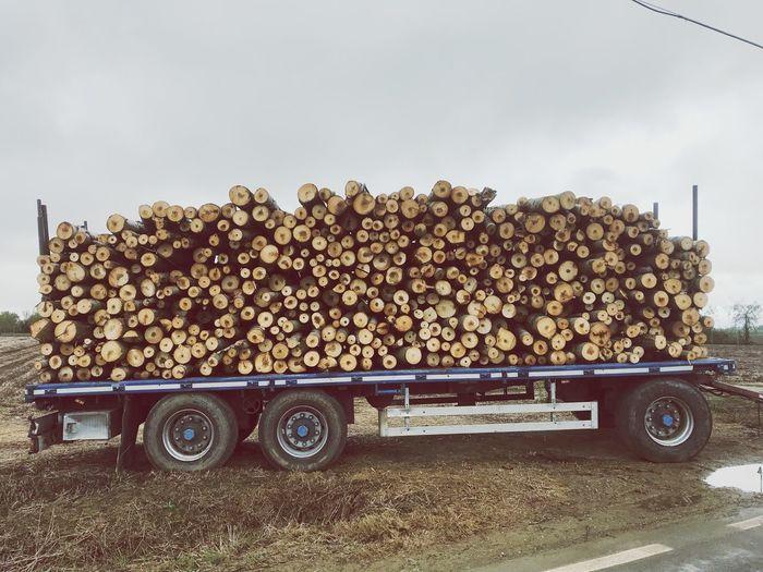 Autumn New Wood Love For Nature ✌ Wood Vivaipioppi Pioppi Motor Vehicle Mode Of Transportation Land Vehicle Transportation Sky Car Day Nature Outdoors