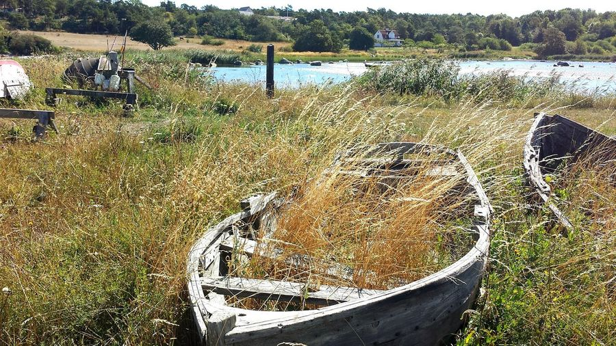 Boats in decay,