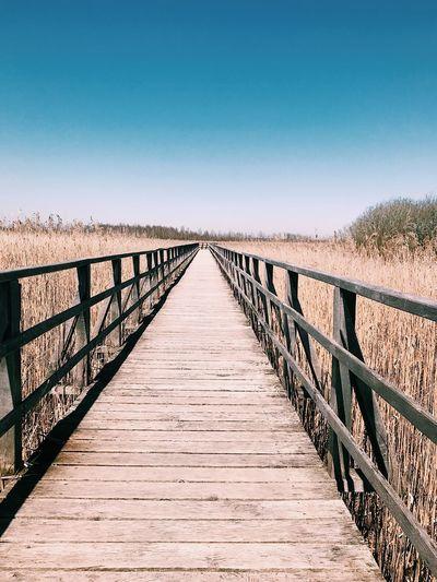 Wooden footbridge on boardwalk against clear sky