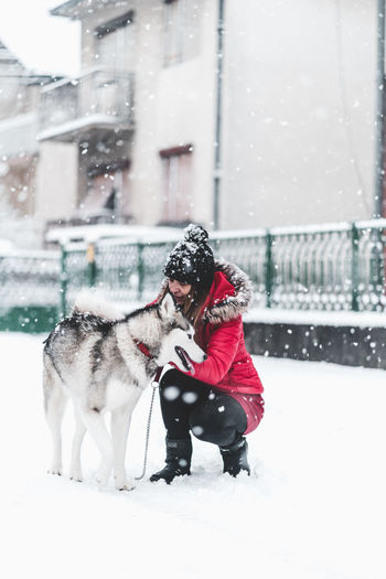 Husky Snow Winter Cold Temperature Canine Pets Domestic Animals Mammal Dog Domestic Warm Clothing Real People Clothing Snowing One Animal Animal Themes Animal One Person Child Day Outdoors Extreme Weather