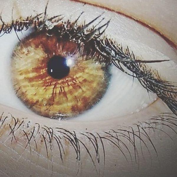 Eyes Brown Eyes ShowingMyEyes Throughmyeyes