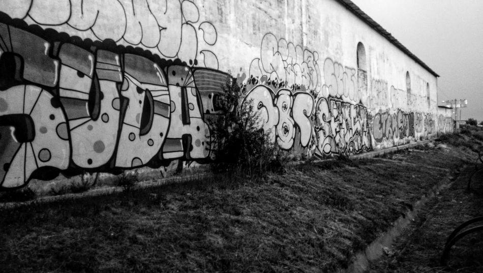 Graffiti Street Art Built Structure No People Outdoors Grass Architecture Lisbon Building Exterior Day