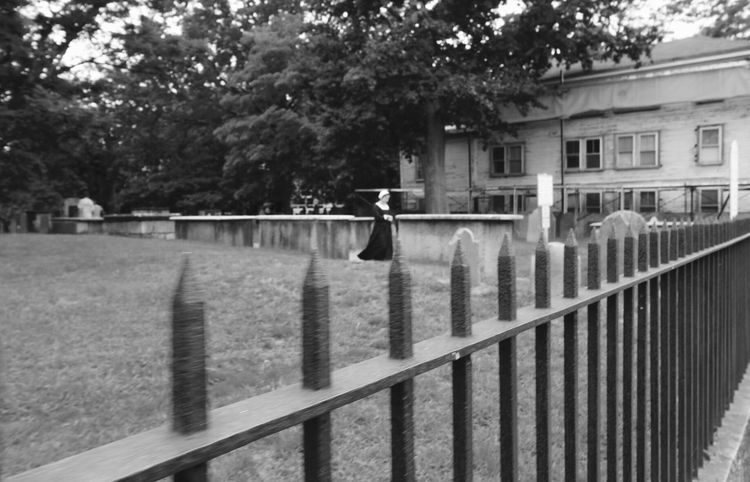 Tree Railing Outdoors Day Building Exterior Built Structure Architecture No People Animal Themes Water Nature Sky Bird Salem, Ma. Blackandwhite Photography Graveyard Salem Local Salem Witch Trials