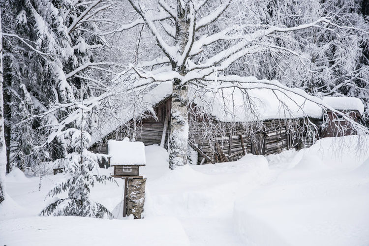 Barn Architecture Bare Tree Beauty In Nature Branch Building Exterior Built Structure Cold Temperature Day Nature No People Outdoors Scenics Snow Tree White Color Winter Shades Of Winter