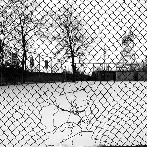 Snow Pattern Fence No People Chainlink Fence Boundary Full Frame Barrier Day Protection Security Metal Built Structure Backgrounds Design Architecture Safety Net - Sports Equipment Nature Tree Outdoors