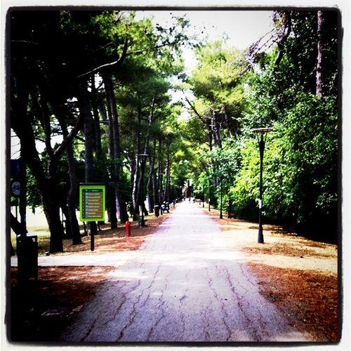 Immagina di andare a lavorare passando dal parco. Fatto?