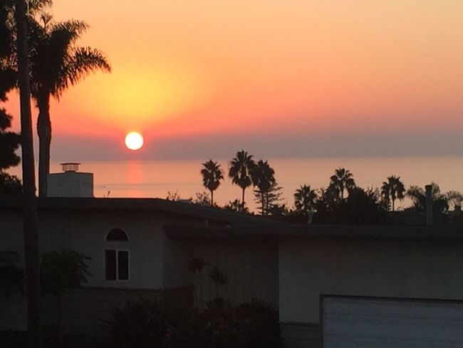SanDiegoSunset Sunset Sky Tree Plant Orange Color Architecture Building Exterior Scenics - Nature Palm Tree Horizon Over Water Sun Outdoors Beauty In Nature Nature