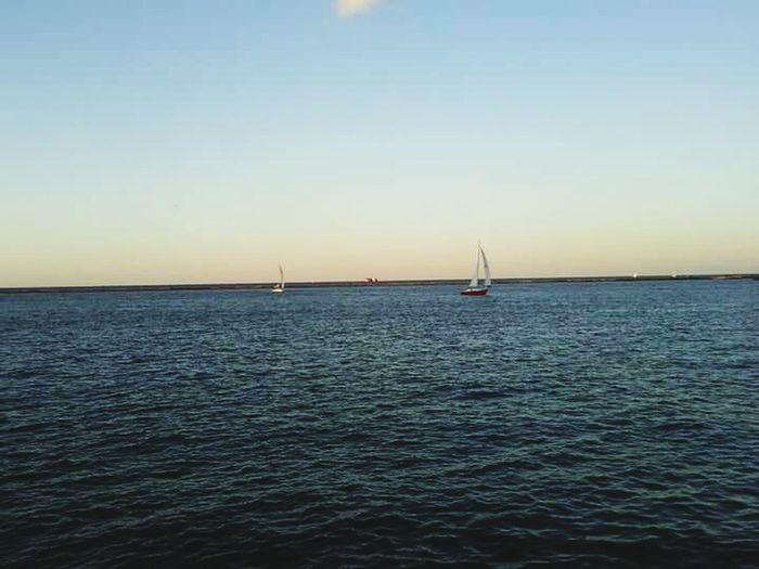 Sailing Sailboat Lake Michigan Chicago Illinois Navy Pier Sunset