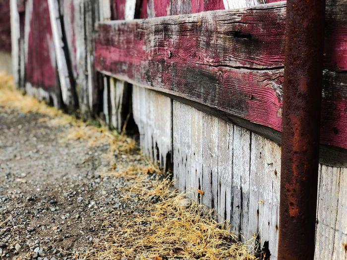 Under the Barn