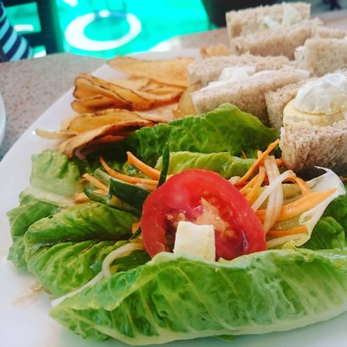 Green Salad Freshness Food Healthy Eating Green Color Ready-to-eat Salad Vegetable Salad Vegetable