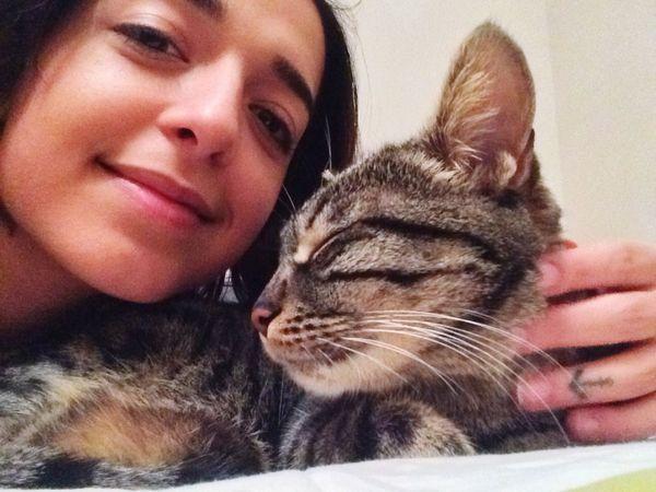Kedi Aşkı Kızım Poki