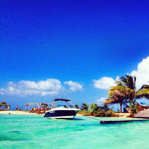 Nature Beachlife Bateau Guadeloupe Enjoying Life