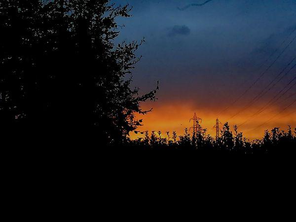 Sunset EyeEm The Best Shots EyeEm Best Shots EyeEm Nature Lover Colorful Eyeemphotography EyeEm Sunset