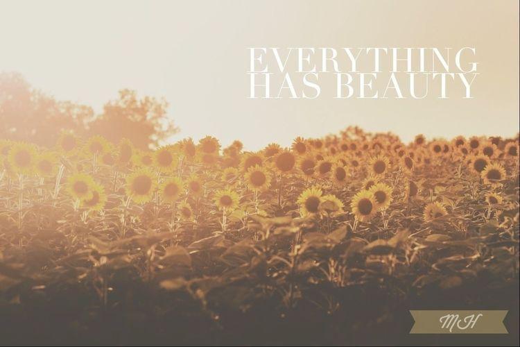 Nature Sunflower EyeEm Nature Lover Eye4photography