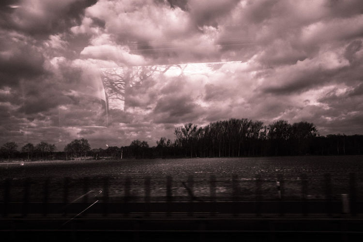 Tree Dramatic Sky Cloud - Sky No People Landscape Nature