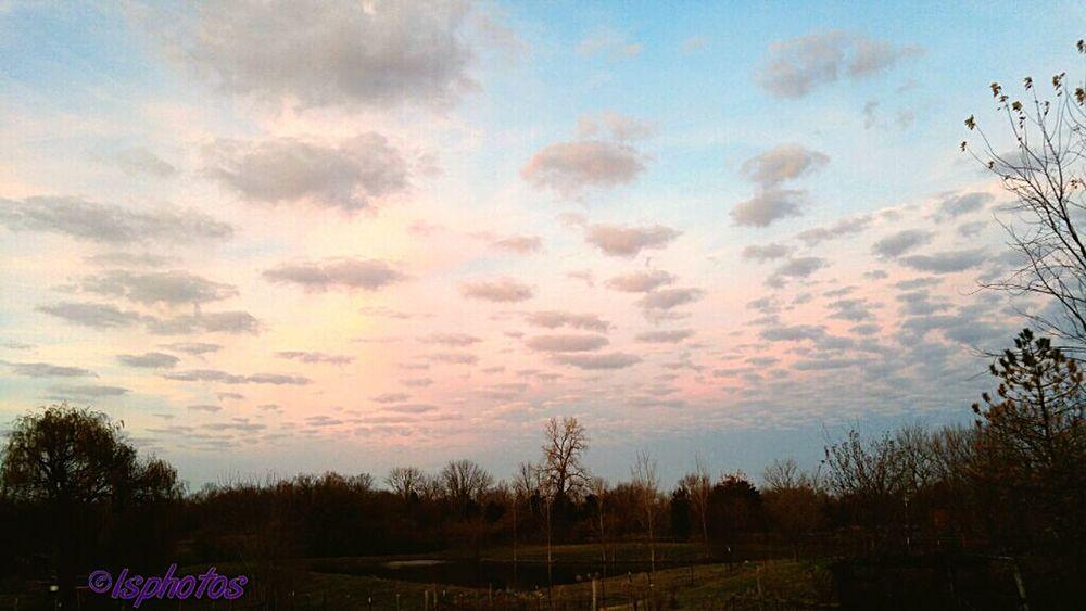 Pink Beautiful Clouds Lovefarmlife Radom Shots Godscreation Sunset