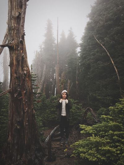 Portrait of young woman standing on tree trunk in forest