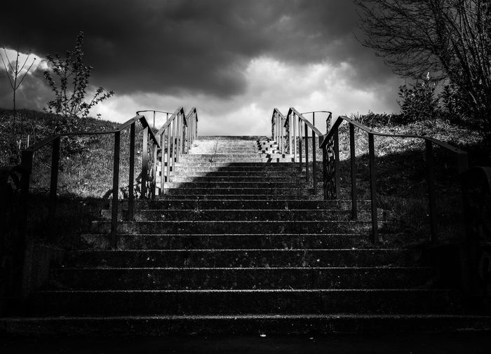 Into the Light Sky The Way Forward Railing Steps Tree Low Angle View Staircase Steps And Staircases No People Outdoors Cloud - Sky Day Nature The Way Up Into The Light Cloudscape Stone Stairs Mountsfield Park Lewisham, London Postcode Postcards