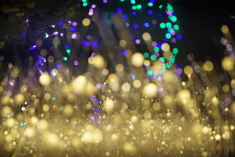 イルミネーション Colors Night Lights Night Photography Bokeh Lights Bokeh Photography Illuminated Lights Arts Culture And Entertainment Abstract Outdoors 東京ミチテラス December 2017 Old Lens Vintage Lens Test Shot Leica Elmar 90mm F4