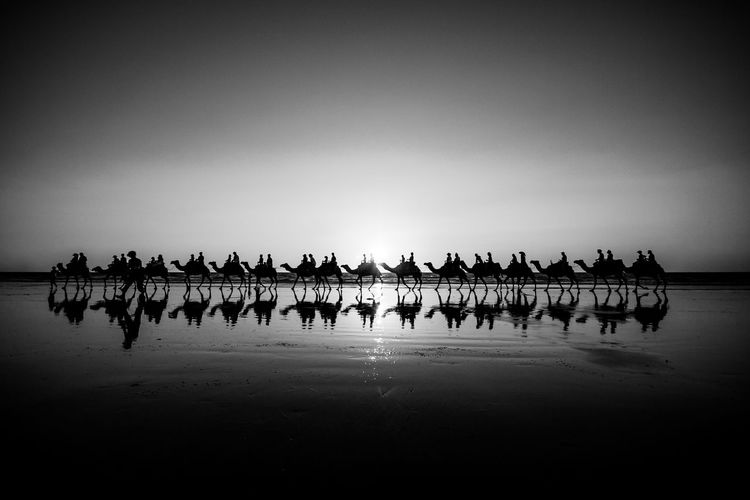 Water Sky Nature Crowd Group Of People Sea Copy Space Large Group Of People Silhouette Outdoors Camel Train Cable Beach Broom Australia Australian Landscape Blackandwhite Black And White Photography