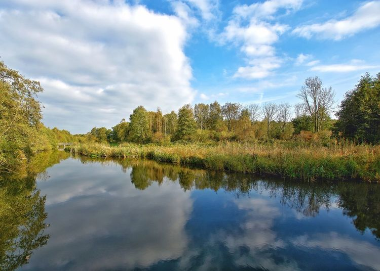 Early autumn Cloud - Sky Water Sky Reflection Nature Plant Beauty In Nature Tranquility Lake Scenics - Nature No People Travel Destinations Outdoors Landscape Tranquil Scene Day