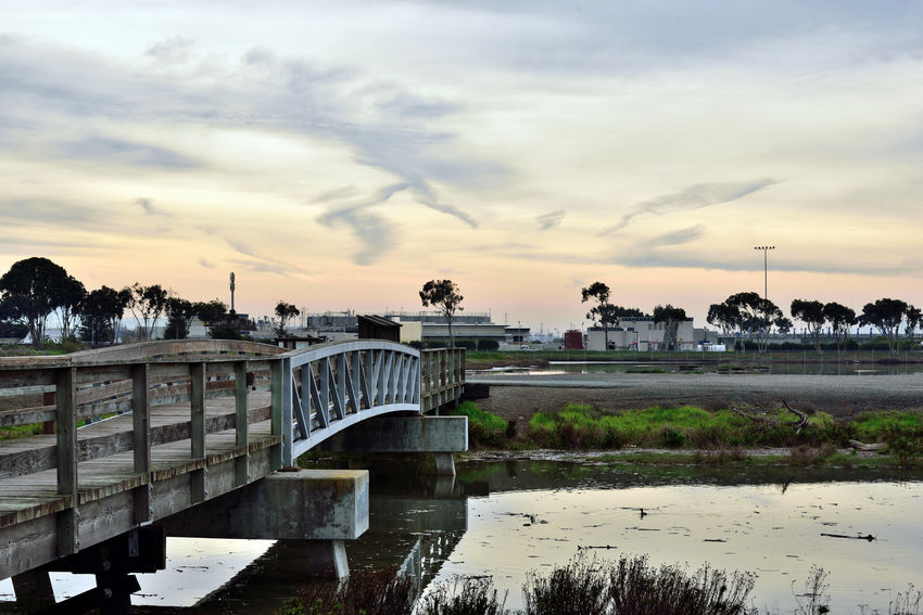 Hayward Regional Shoreline Park 2 San Lorenzo, Ca. Tidal Wetlands Marsh San Lorenzo Creek Creek Crossing Footbridge Pedestrian /Bicycle Bridge San Francisco Bay Trail Early Morning Water Treatment Plant Fresh Water Meets Salt Water Bird Habitant Land Used For Salt Production 1850-1980's Creek Flows To San Francisco Bay Landscape_Collection Landscape_photography Reflections Reflections In The Water Nature Beauty In Nature Nature_collection Trees Ponds Cloud - Sky