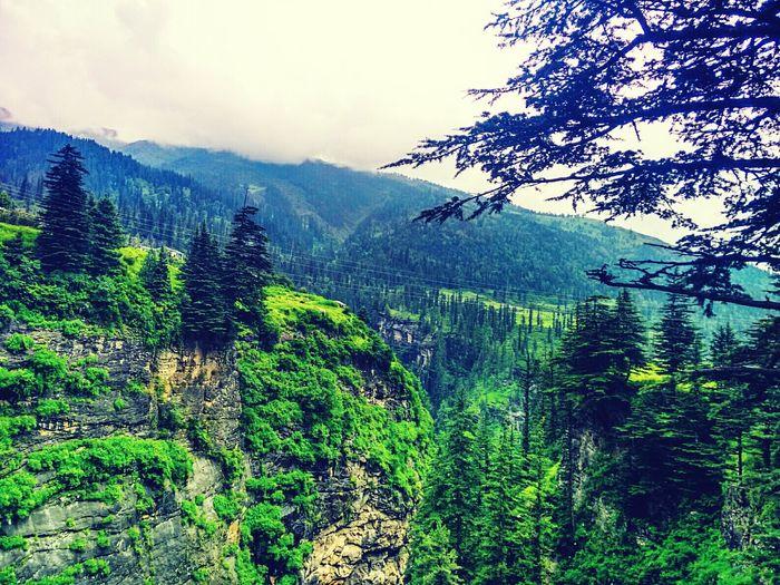 Explore Himachal Himachalpradesh Himalayas Manali Naturelovers Nature Photography