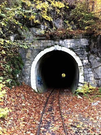 Pipe - Tube Autumn Outdoors No People Tunnel Nature Day Bükk Light At The End Of The Tunnel End Mistery Darkness And Light Fall Autumn Collection Adapted To The City The Secret Spaces Let's Go. Together. Be. Ready.