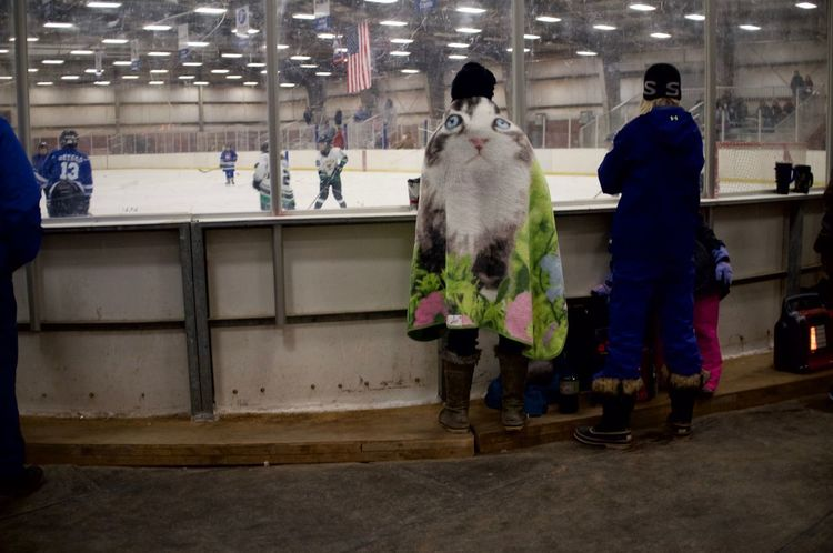 February 11, 2018 Wyoming Adult Douglas Full Length Hockey Indoors  Large Group Of People Lifestyles Men Night Occupation People Real People Women