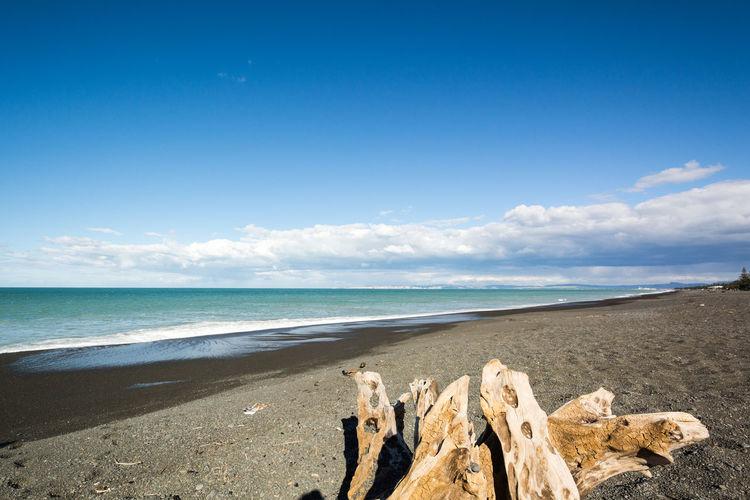 Driftwood On Sea Shore Against Sky
