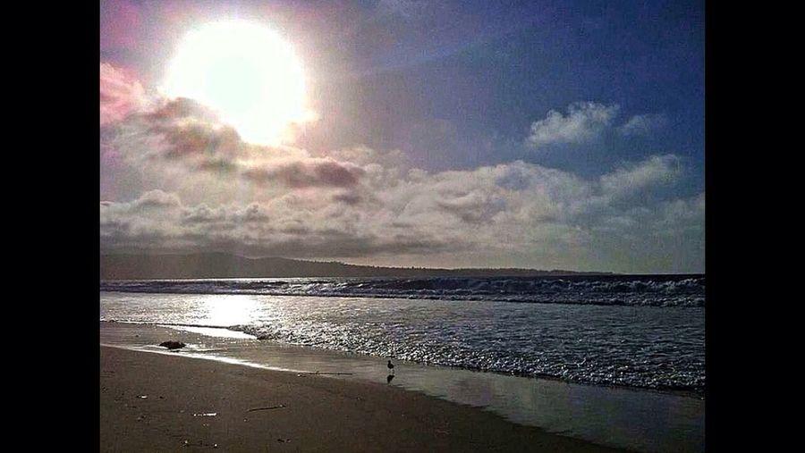 Del Monte Beach Tadaa Community Seascapes Sunsets #shoreline #beach California Backroads