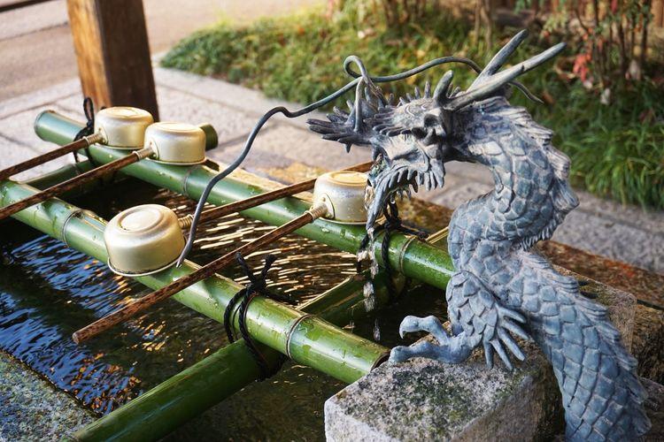 2016 Dragon Japan Kyoto Religion Seimei Shrine Seimeijinja Shrine Water 京都 安倍晴明 手水舍 晴明神社