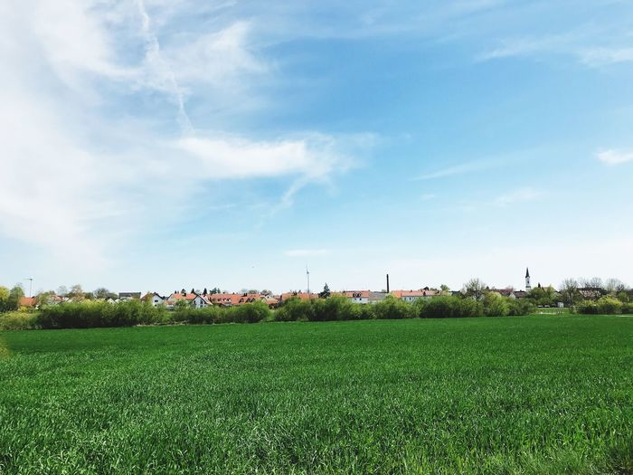 Plant Sky Field Cloud - Sky Land Environment Green Color Landscape Beauty In Nature Tranquil Scene Nature Grass Agriculture Scenics - Nature Tranquility