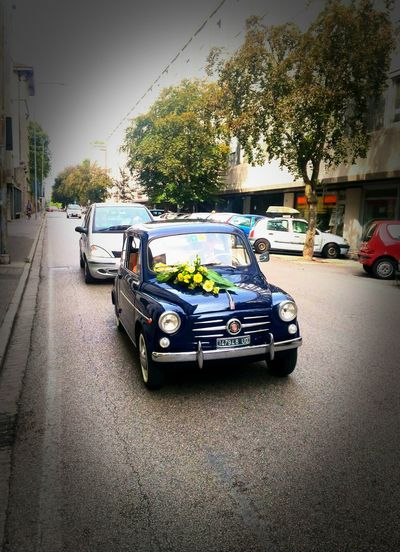 Wedding Wedding Day Fiat Fiat 500 Familiare 500 Vehicle Art Street On The Move Travel City Life City Street Vignette Symbol Promise All Life Long Special Day Spouse Spouse Parents Udine Italy🇮🇹 Matrimonio All'italiana