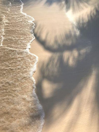 Close-up of sunlight