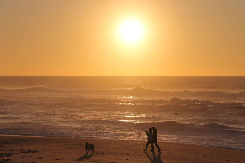 Silhouette people with dog walking at beach against sky during sunset