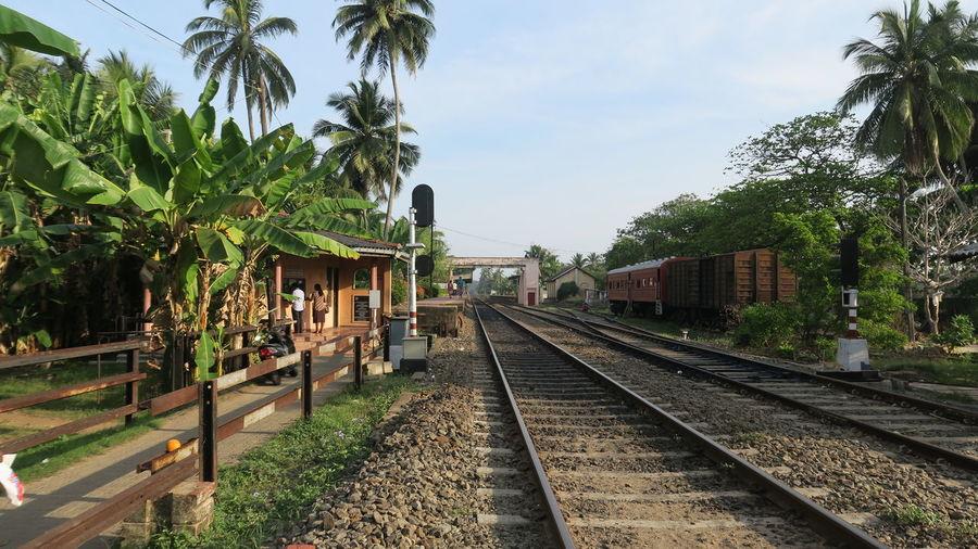 Sri Lanka Rail