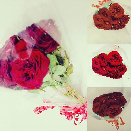 Red roses from boo.. Love you boo...Roses Frommyboo Happy Loveyoubo