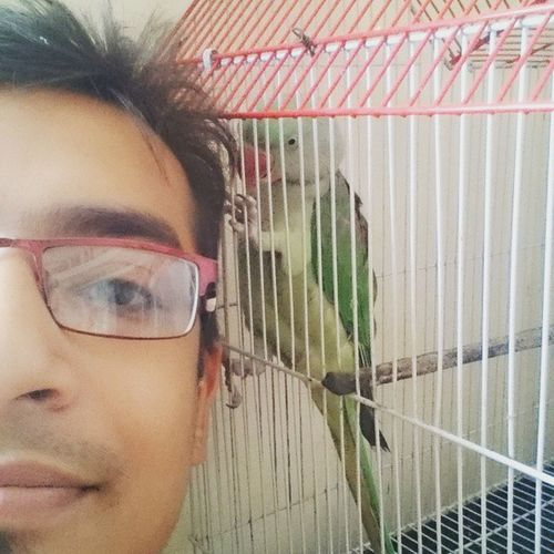 Selfie with my parrot Selfies Pet Parrot Petlove  Love Petparrot