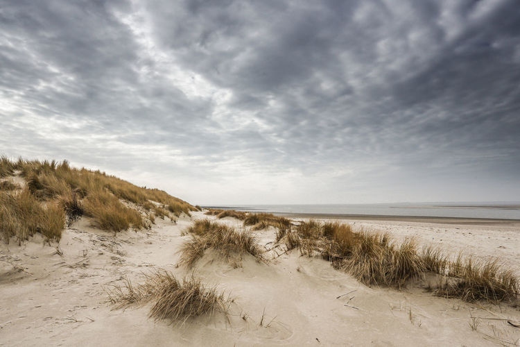 Beach Beauty In Nature Cloud - Sky Day Horizon Over Water Landscape Marram Grass Nature No People Outdoors Sand Sand Dune Scenics Sea Sky Tranquil Scene Tranquility Water